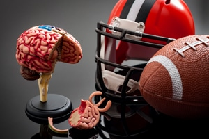 Football helmet, football, and plastic model of brain
